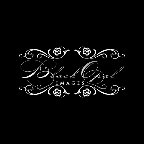 Logo Design by designhouse - Entry No. 51 in the Logo Design Contest New Logo Design for Black Opal Images.