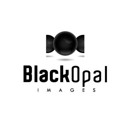 Logo Design by SilverEagle - Entry No. 52 in the Logo Design Contest New Logo Design for Black Opal Images.