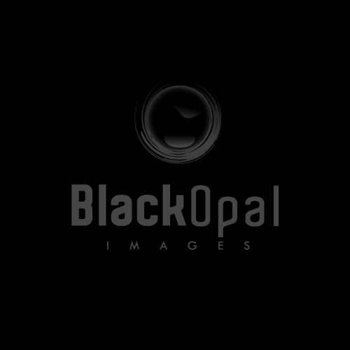 Logo Design by SilverEagle - Entry No. 53 in the Logo Design Contest New Logo Design for Black Opal Images.