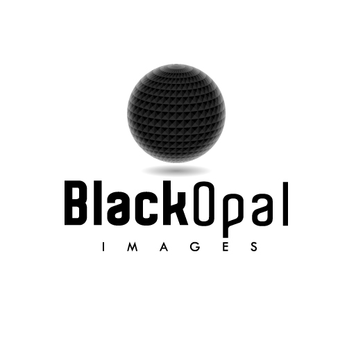 Logo Design by SilverEagle - Entry No. 54 in the Logo Design Contest New Logo Design for Black Opal Images.