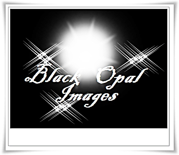 Logo Design by Hyacinth - Entry No. 56 in the Logo Design Contest New Logo Design for Black Opal Images.