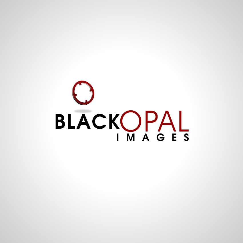 Logo Design by martinz - Entry No. 58 in the Logo Design Contest New Logo Design for Black Opal Images.