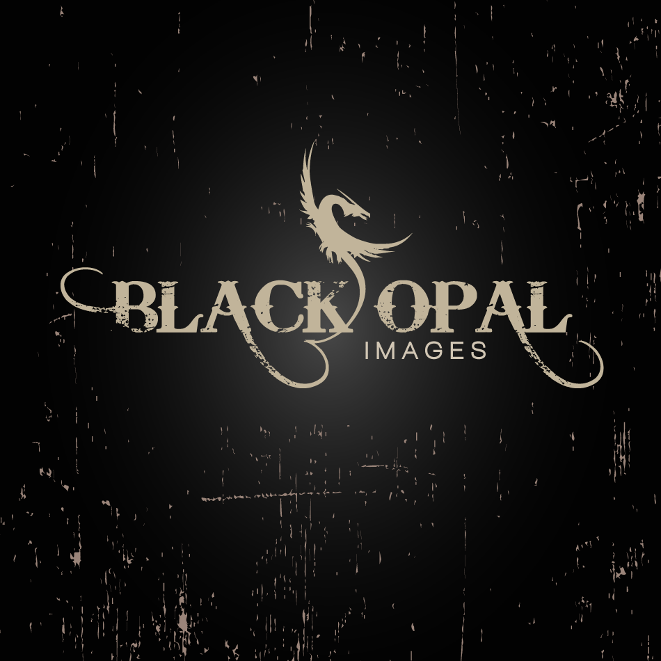 Logo Design by moonflower - Entry No. 61 in the Logo Design Contest New Logo Design for Black Opal Images.