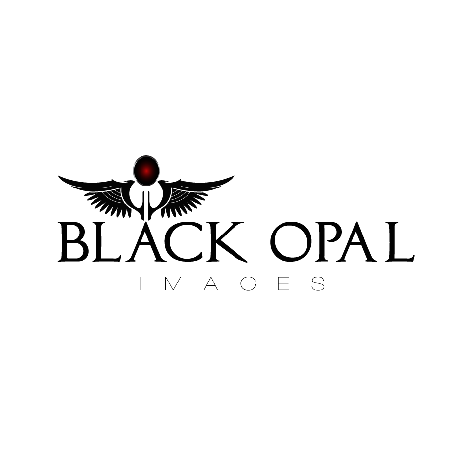 Logo Design by moonflower - Entry No. 64 in the Logo Design Contest New Logo Design for Black Opal Images.