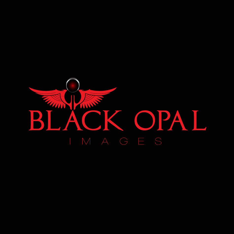 Logo Design by moonflower - Entry No. 65 in the Logo Design Contest New Logo Design for Black Opal Images.