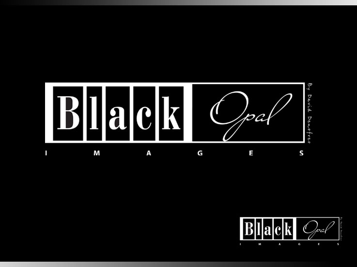 Logo Design by zdesign - Entry No. 68 in the Logo Design Contest New Logo Design for Black Opal Images.