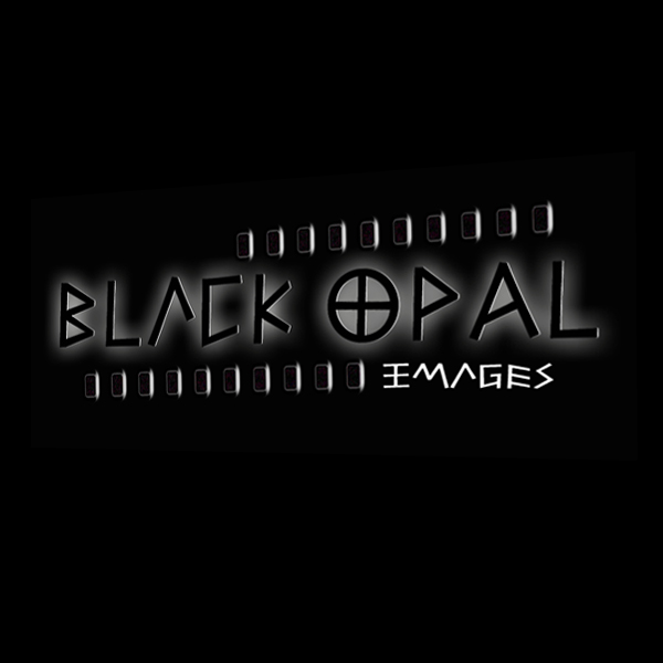 Logo Design by artget - Entry No. 69 in the Logo Design Contest New Logo Design for Black Opal Images.