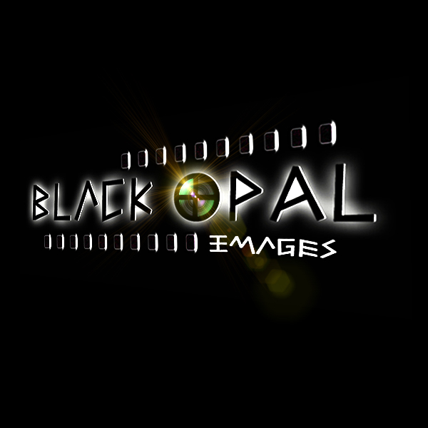 Logo Design by artget - Entry No. 73 in the Logo Design Contest New Logo Design for Black Opal Images.