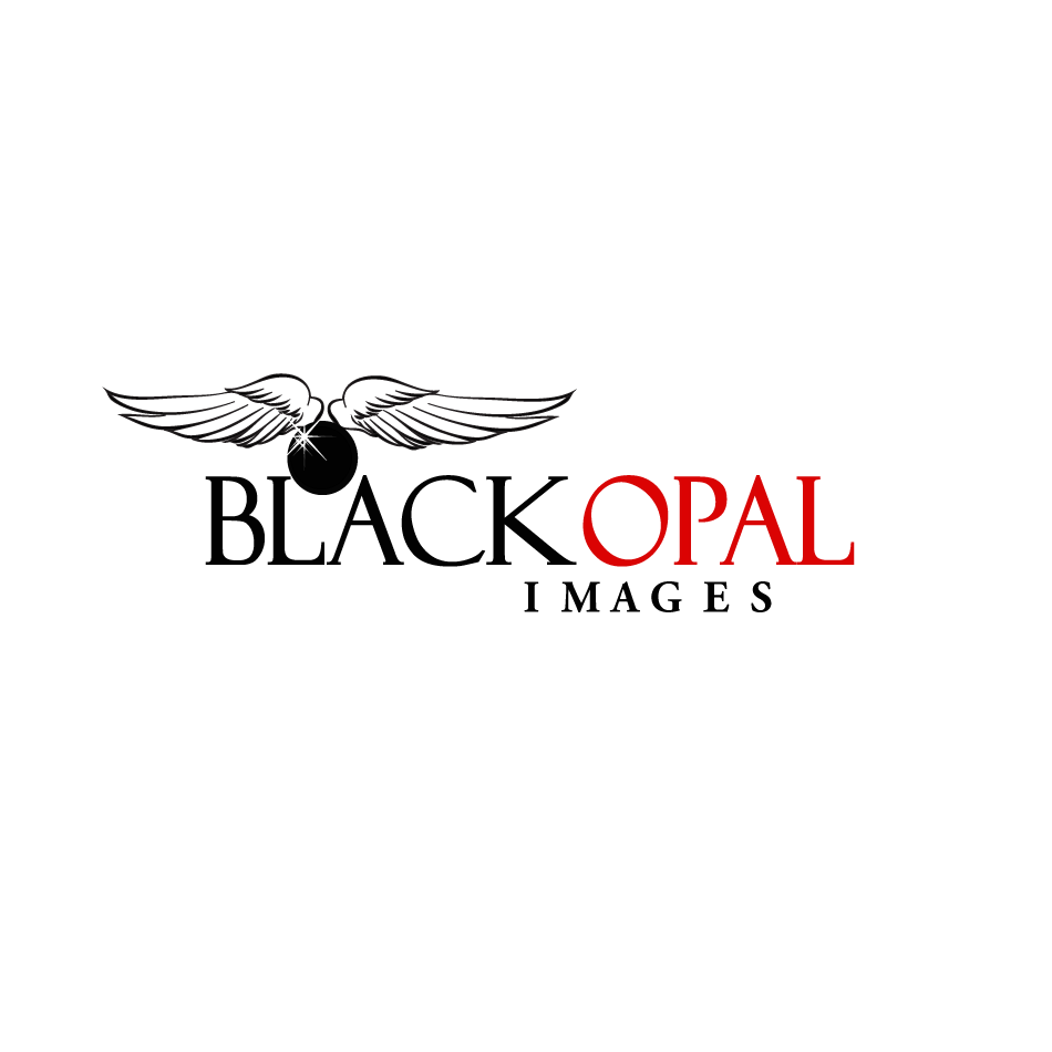 Logo Design by moonflower - Entry No. 78 in the Logo Design Contest New Logo Design for Black Opal Images.