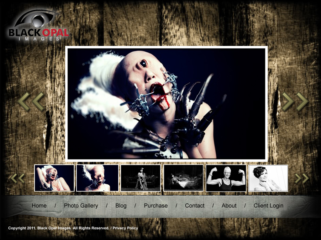 Web Page Design by tsyrette - Entry No. 15 in the Web Page Design Contest New Web Page Design for Black Opal Images.