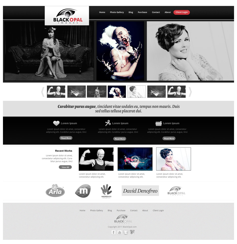 Web Page Design by rockpinoy - Entry No. 18 in the Web Page Design Contest New Web Page Design for Black Opal Images.
