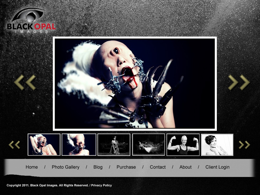 Web Page Design by tsyrette - Entry No. 19 in the Web Page Design Contest New Web Page Design for Black Opal Images.