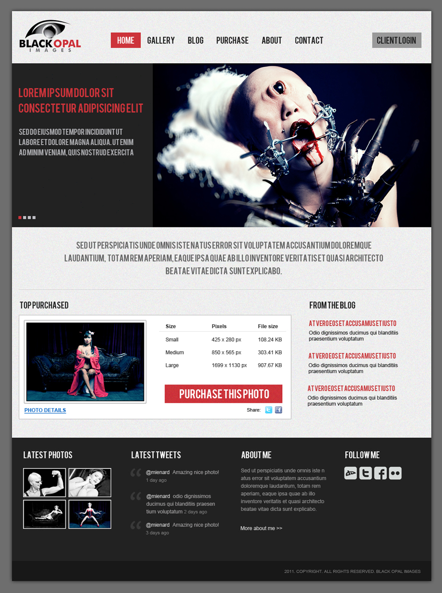 Web Page Design by themesmile - Entry No. 21 in the Web Page Design Contest New Web Page Design for Black Opal Images.