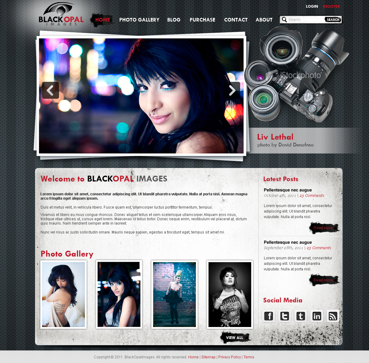 Web Page Design by Vladimir Koncos - Entry No. 26 in the Web Page Design Contest New Web Page Design for Black Opal Images.