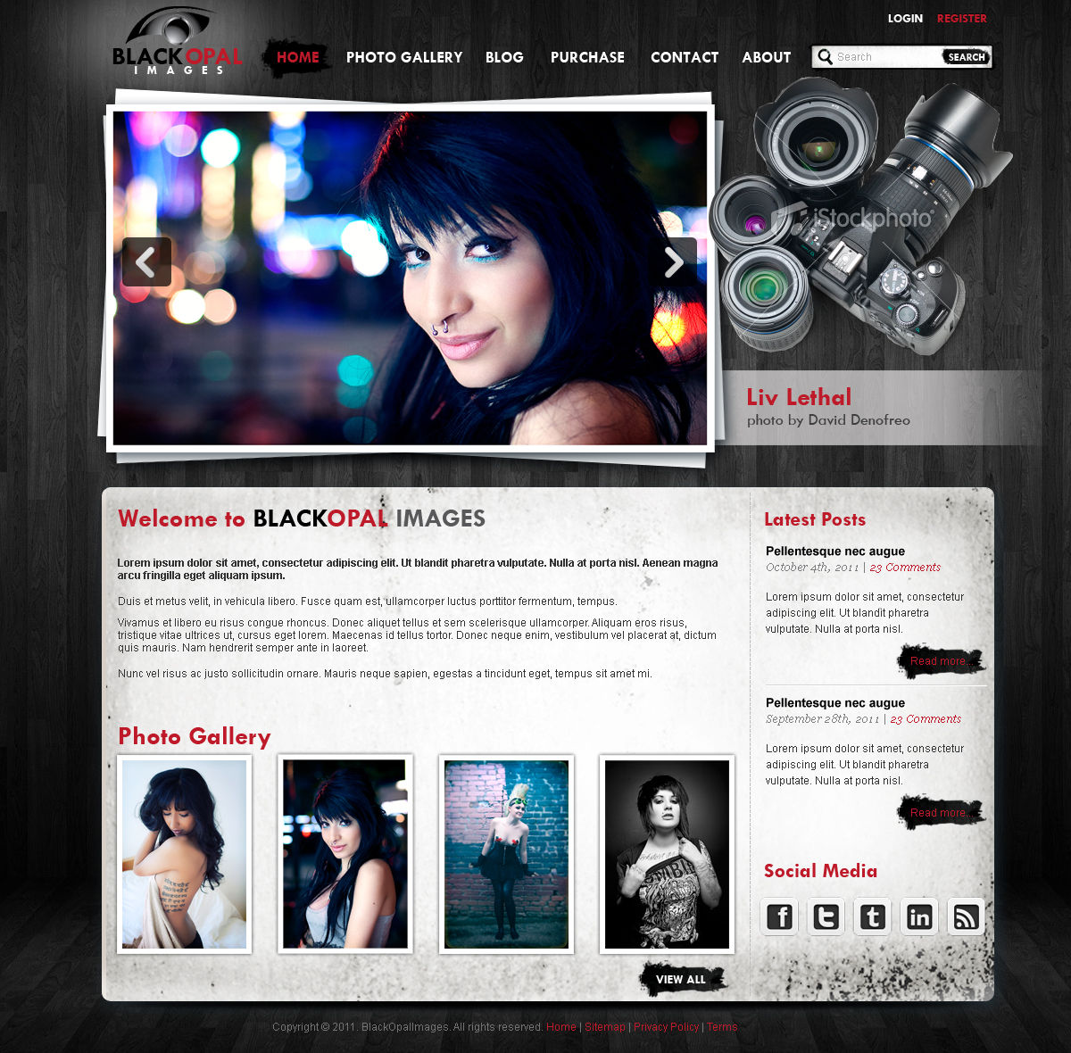 Web Page Design by Vladimir Koncos - Entry No. 28 in the Web Page Design Contest New Web Page Design for Black Opal Images.