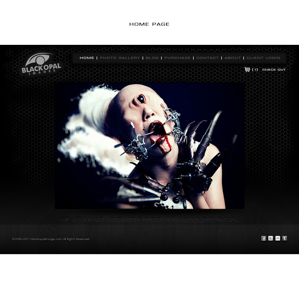 Web Page Design by suke - Entry No. 29 in the Web Page Design Contest New Web Page Design for Black Opal Images.