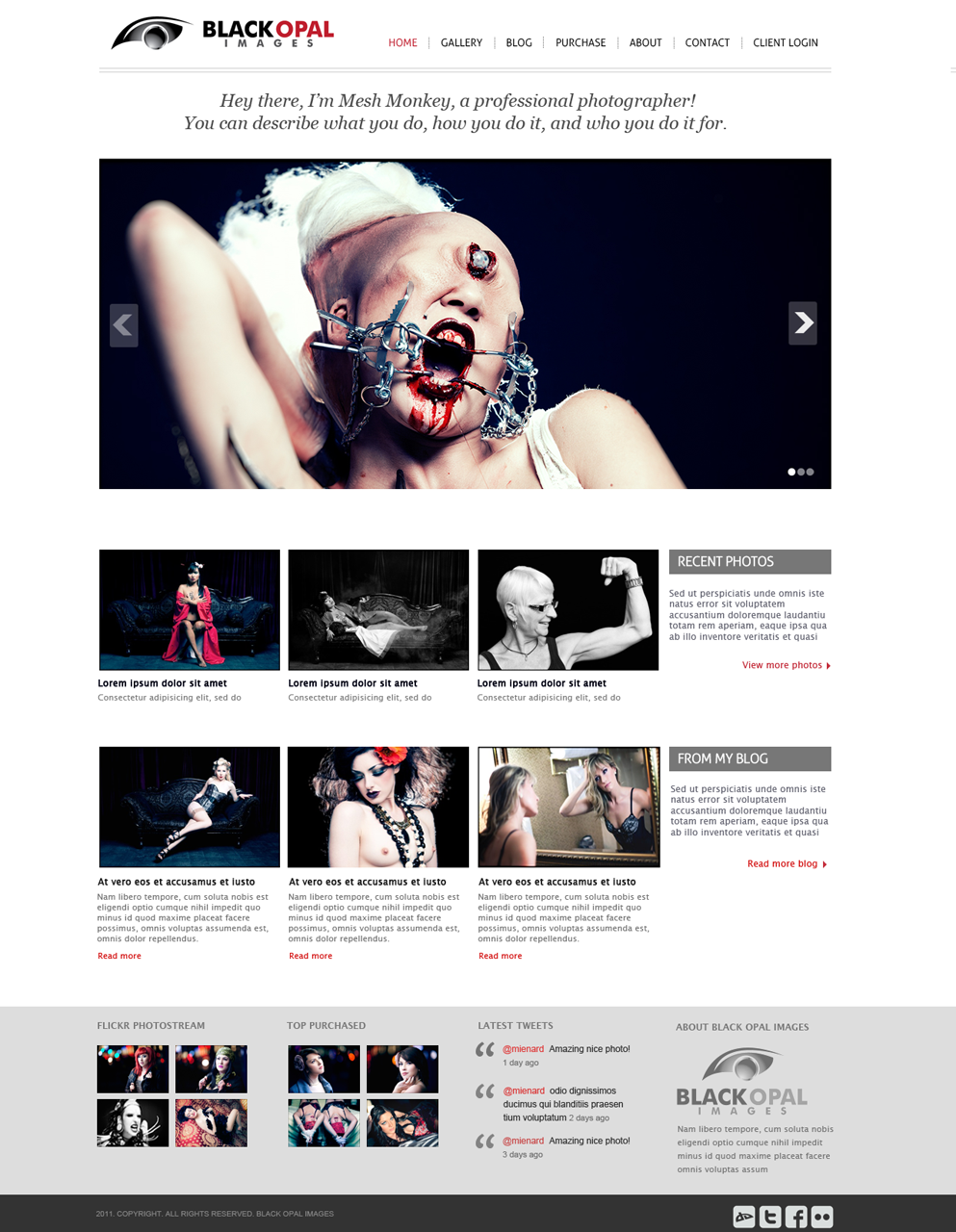 Web Page Design by themesmile - Entry No. 31 in the Web Page Design Contest New Web Page Design for Black Opal Images.