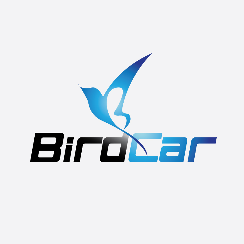 Logo Design by stormbighit - Entry No. 8 in the Logo Design Contest New Logo Design for Bird car.