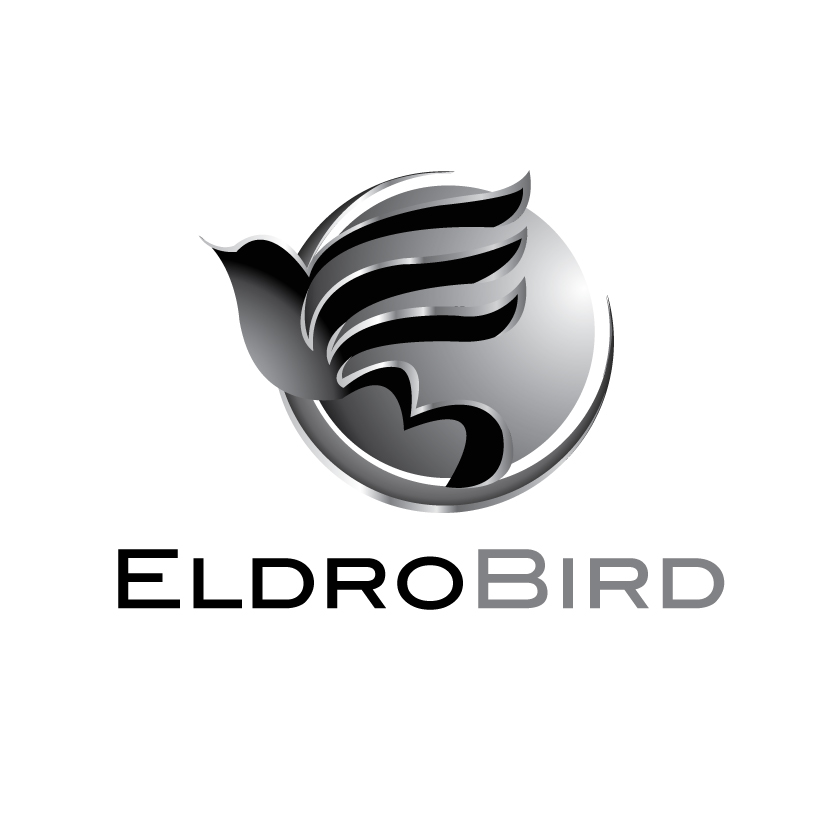 Logo Design by stormbighit - Entry No. 43 in the Logo Design Contest New Logo Design for Bird car.