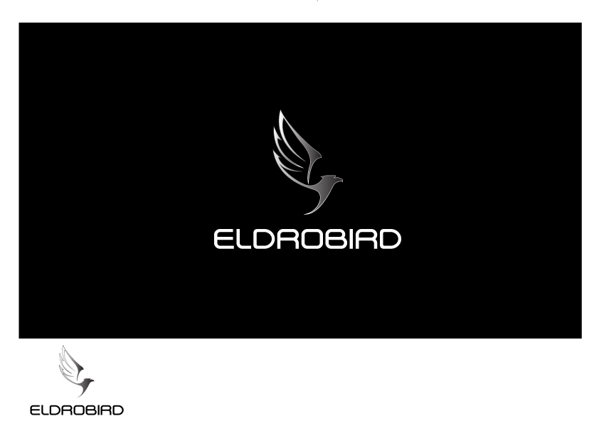 Logo Design by Suryo Prakadewa - Entry No. 74 in the Logo Design Contest New Logo Design for Bird car.