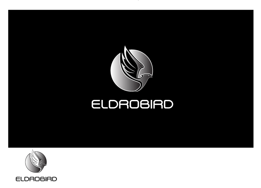 Logo Design by Suryo Prakadewa - Entry No. 75 in the Logo Design Contest New Logo Design for Bird car.