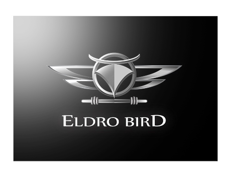 Logo Design by kowreck - Entry No. 110 in the Logo Design Contest New Logo Design for Bird car.