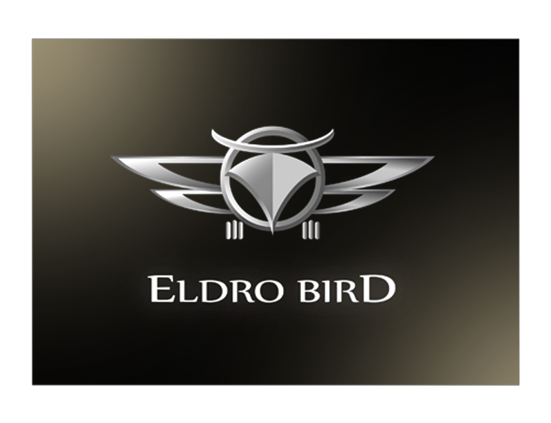 Logo Design by kowreck - Entry No. 111 in the Logo Design Contest New Logo Design for Bird car.