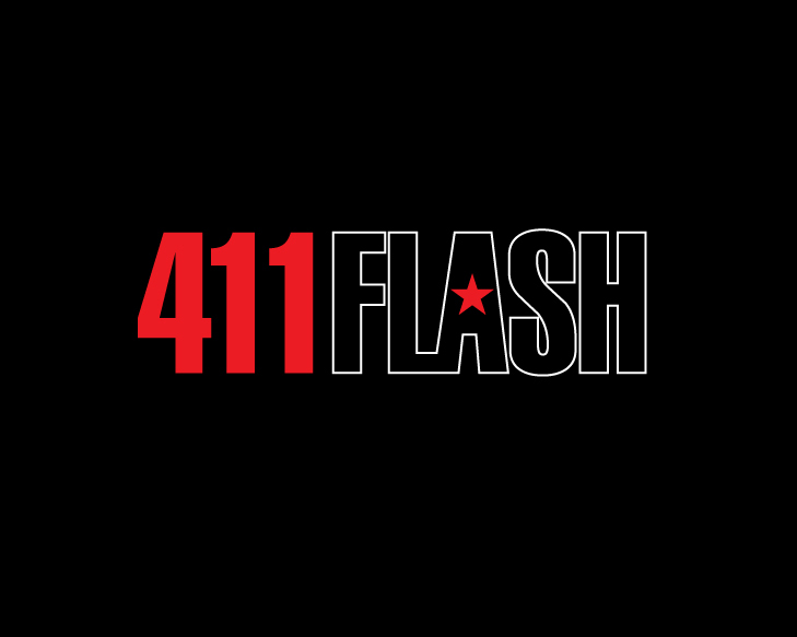 Logo Design by designaurus - Entry No. 16 in the Logo Design Contest 411Flash Logo Design.