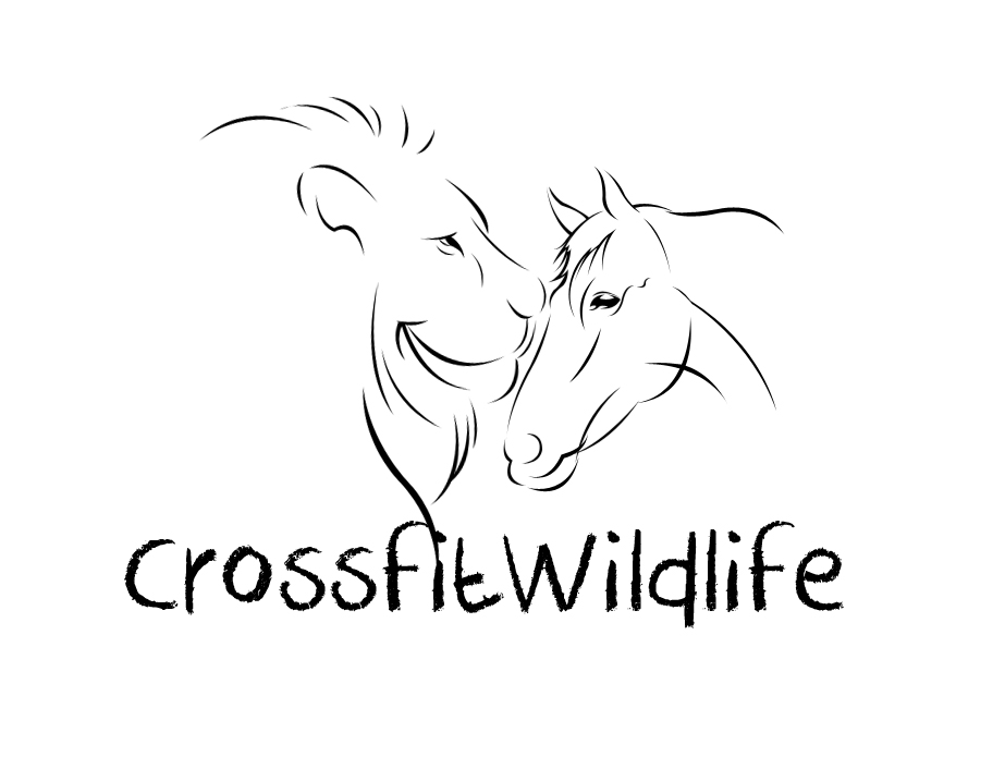 Logo Design by vdhadse - Entry No. 14 in the Logo Design Contest Unique Logo Design Wanted for CrossFit Wildlife.