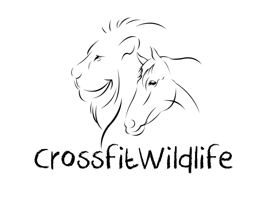 Logo Design by vdhadse - Entry No. 15 in the Logo Design Contest Unique Logo Design Wanted for CrossFit Wildlife.