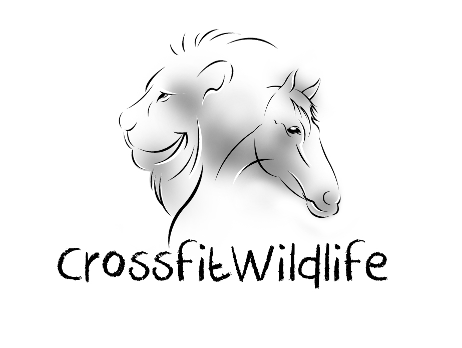 Logo Design by vdhadse - Entry No. 16 in the Logo Design Contest Unique Logo Design Wanted for CrossFit Wildlife.