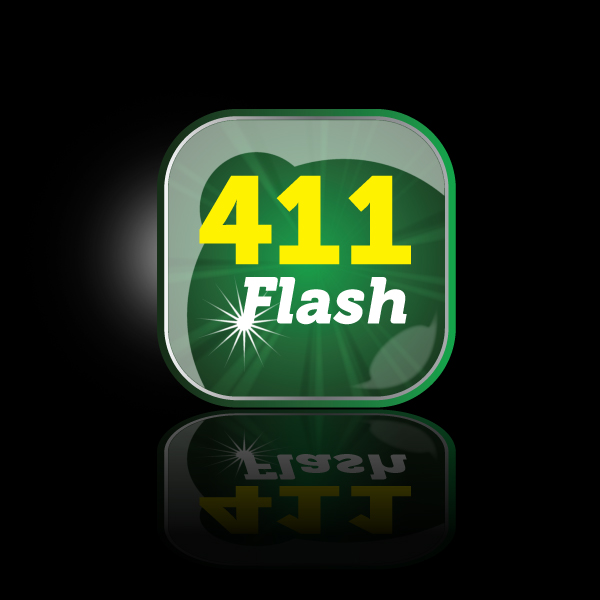 Logo Design by storm - Entry No. 60 in the Logo Design Contest 411Flash Logo Design.
