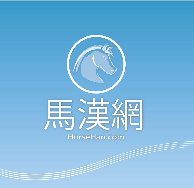 "Logo Design by kowreck - Entry No. 85 in the Logo Design Contest ""马汉网"" (horsehan.com)."