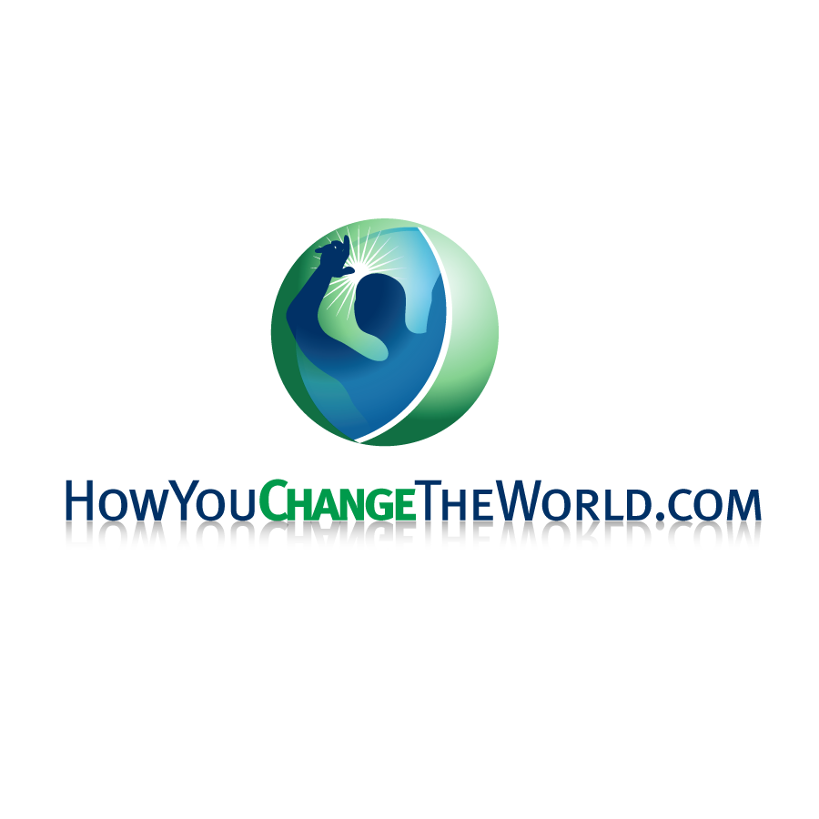 Logo Design by Private User - Entry No. 56 in the Logo Design Contest Logo Design Needed for Exciting New Company HowYouChangeTheWorld.com.