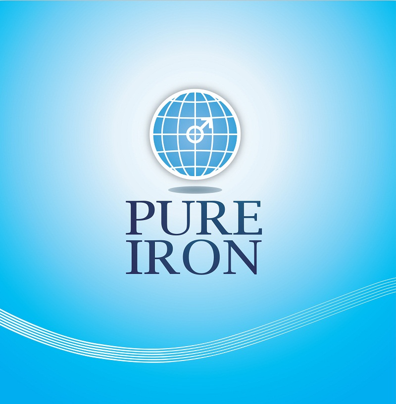 Logo Design by kowreck - Entry No. 61 in the Logo Design Contest Fun Logo Design for Pure Iron.