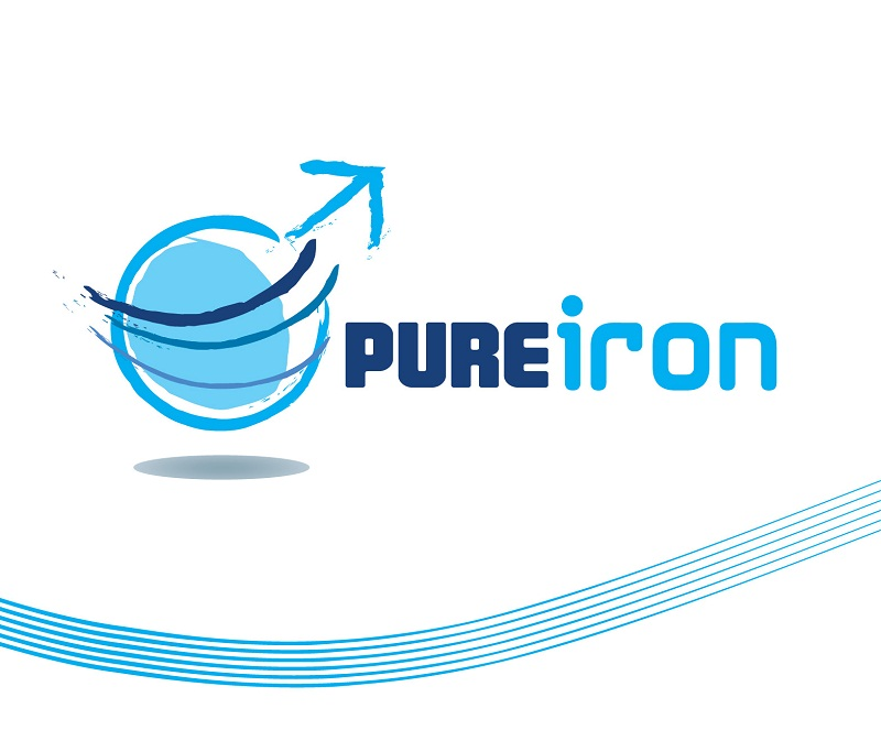 Logo Design by kowreck - Entry No. 66 in the Logo Design Contest Fun Logo Design for Pure Iron.
