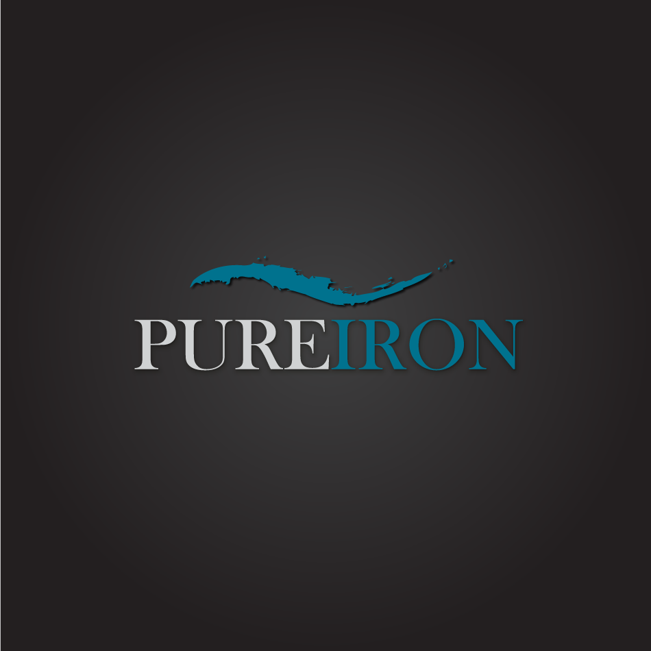 Logo Design by moonflower - Entry No. 135 in the Logo Design Contest Fun Logo Design for Pure Iron.
