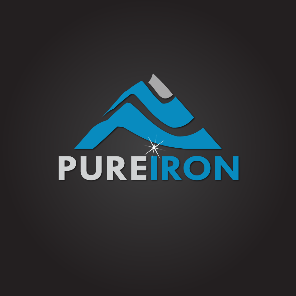 Logo Design by moonflower - Entry No. 205 in the Logo Design Contest Fun Logo Design for Pure Iron.
