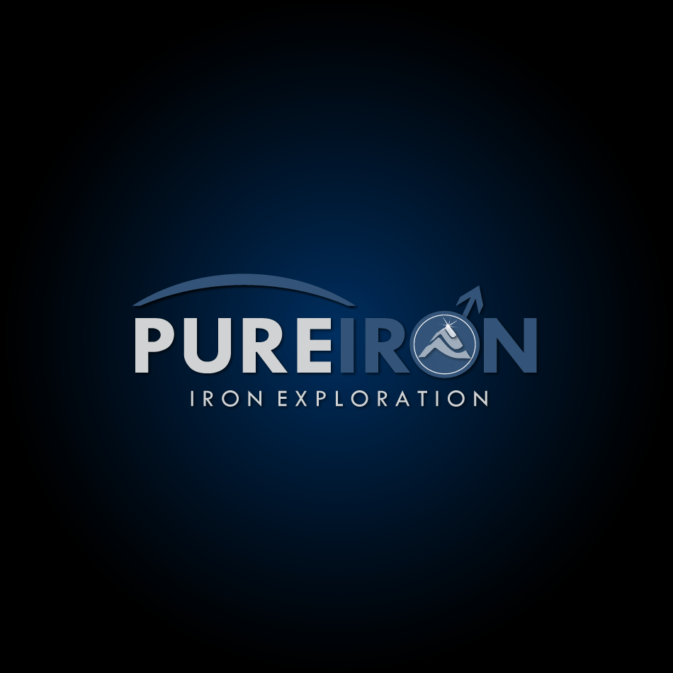 Logo Design by moonflower - Entry No. 209 in the Logo Design Contest Fun Logo Design for Pure Iron.