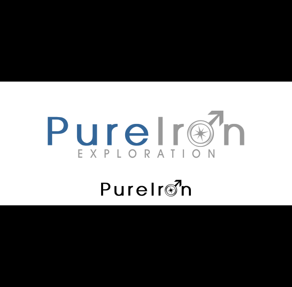 Logo Design by Spayer - Entry No. 268 in the Logo Design Contest Fun Logo Design for Pure Iron.