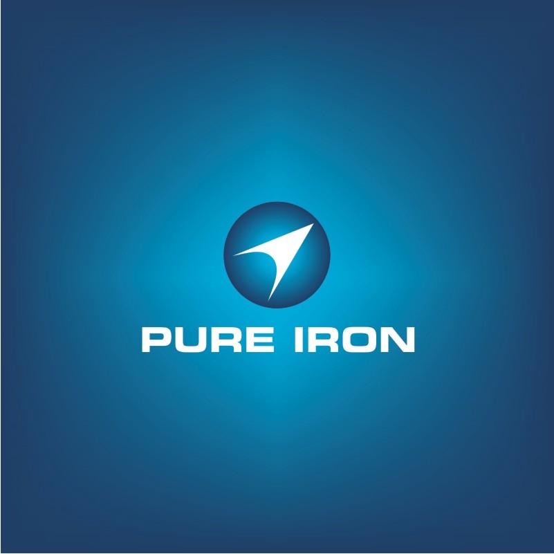 Logo Design by Private User - Entry No. 273 in the Logo Design Contest Fun Logo Design for Pure Iron.