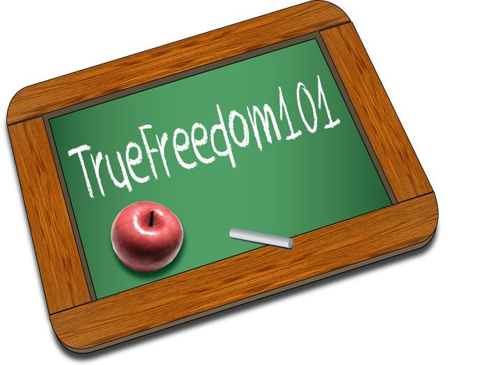 Logo Design by Lefky - Entry No. 10 in the Logo Design Contest www.TrueFreedom101.com Logo Design.