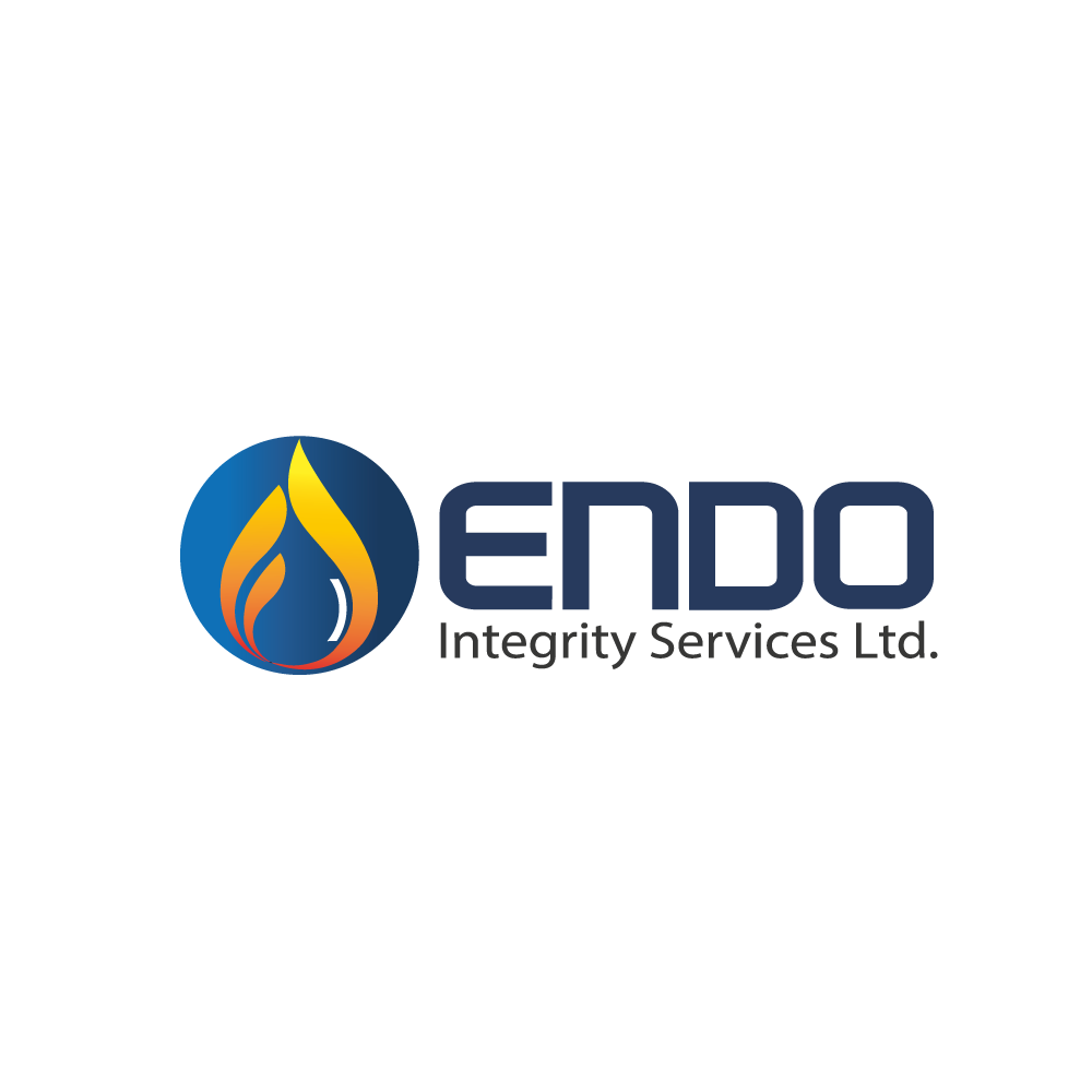 Logo Design by rockin - Entry No. 2 in the Logo Design Contest New Logo Design for ENDO Integrity Services Ltd..