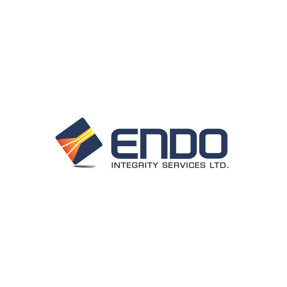 Logo Design by rockin - Entry No. 16 in the Logo Design Contest New Logo Design for ENDO Integrity Services Ltd..