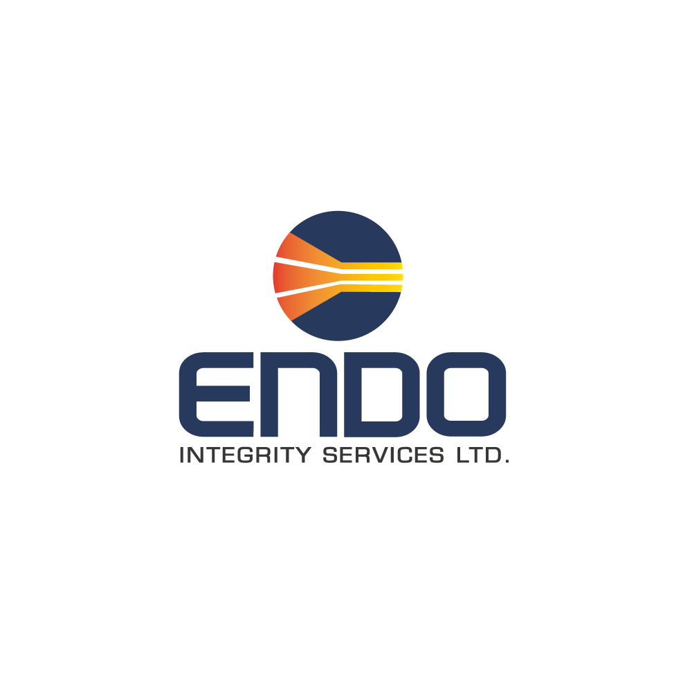 Logo Design by rockin - Entry No. 17 in the Logo Design Contest New Logo Design for ENDO Integrity Services Ltd..