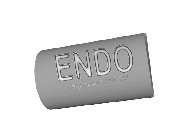 Logo Design by Mythos Designs - Entry No. 18 in the Logo Design Contest New Logo Design for ENDO Integrity Services Ltd..