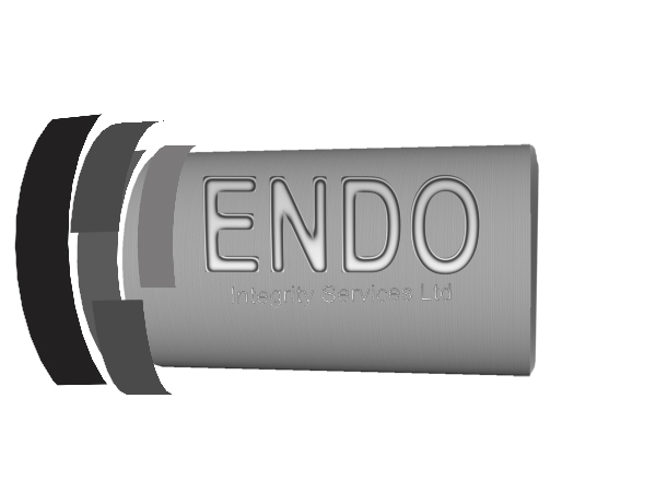 Logo Design by Mythos Designs - Entry No. 19 in the Logo Design Contest New Logo Design for ENDO Integrity Services Ltd..