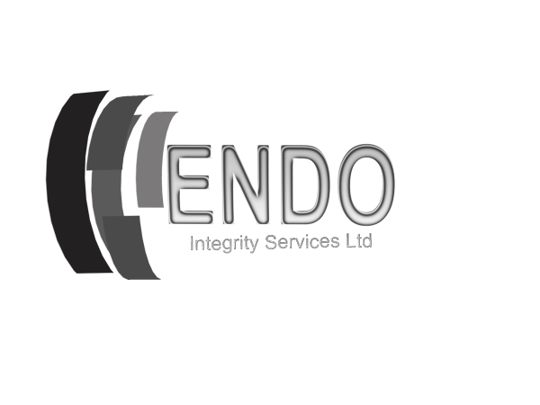 Logo Design by Mythos Designs - Entry No. 20 in the Logo Design Contest New Logo Design for ENDO Integrity Services Ltd..