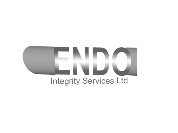 Logo Design by Mythos Designs - Entry No. 26 in the Logo Design Contest New Logo Design for ENDO Integrity Services Ltd..