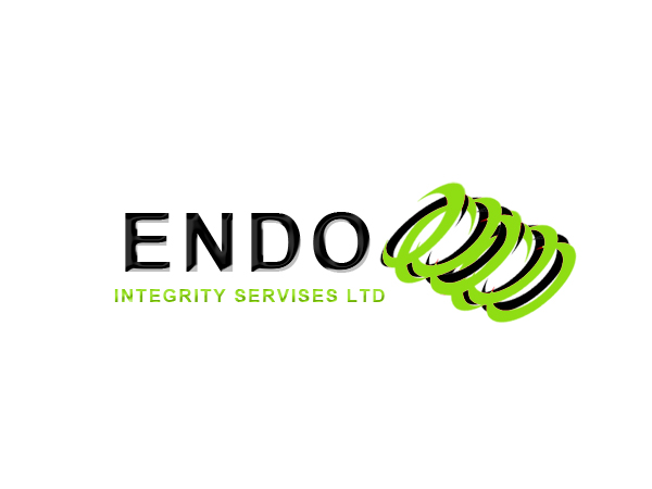 Logo Design by Mythos Designs - Entry No. 28 in the Logo Design Contest New Logo Design for ENDO Integrity Services Ltd..